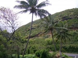 100 3208 300x225 Hawaii