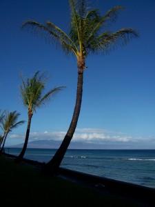 100 3231 225x300 Hawaii