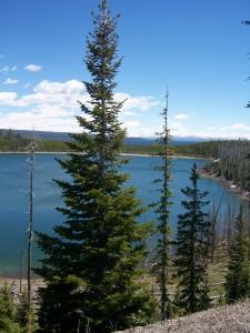 100 2408 225x300 Yellowstone Lake