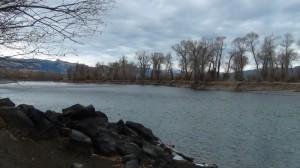 DSC00611 300x168 Yellowstone River